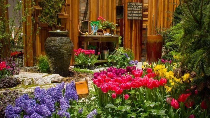 Chicago Flower and Garden Show at Navy Pier