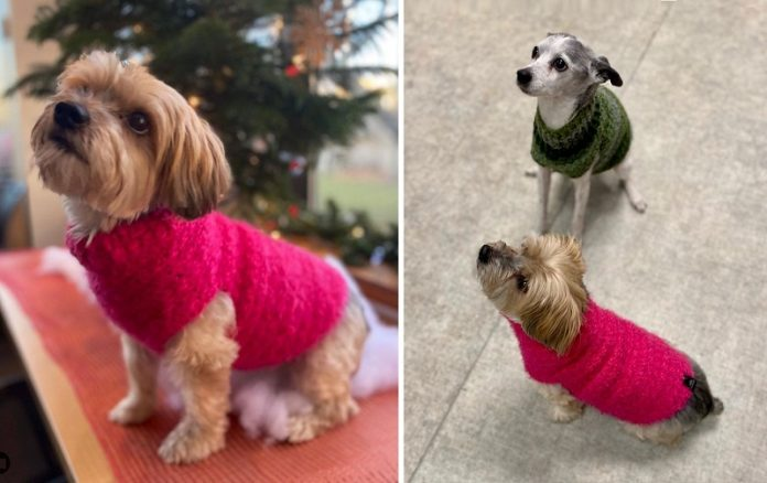 JoyStar Handmade - dog sweaters